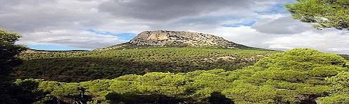 Aran a Sierra Espuña (Maig 2015)